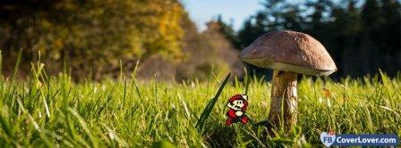 Mario  Facebook Covers