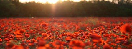 Meadow Flowers Facebook Covers