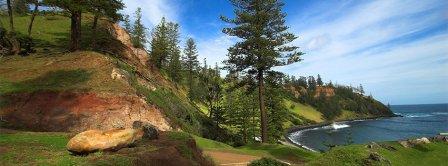 Norfolk Island Pines Facebook Covers