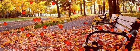 Park Bench Autumn Facebook Covers
