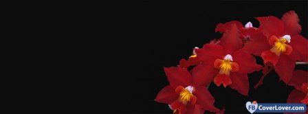 Red Orchids Flowers Facebook Covers