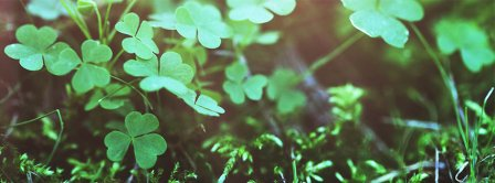 Saint Patricks Clovers Facebook Covers