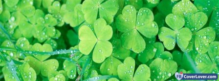 Saint Patrick Four Leaf Clovers 2 Facebook Covers