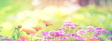 Spring Forest Flowers Facebook Covers