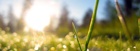 Spring Macro Green Grass Dew Facebook Covers