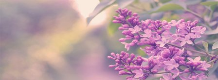 Spring Magic Lilac Facebook Covers
