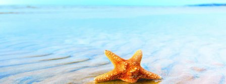 Summer Starfish Facebook Covers