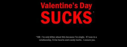 Valentines Day Sucks Facebook Covers