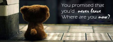 Teddy Bear Where Are You Now  Facebook Covers