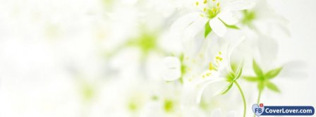 White Flowers Facebook Covers