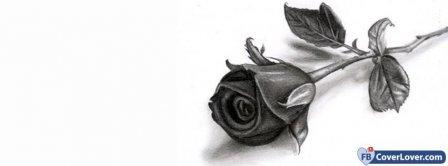 Black Rose Facebook Covers