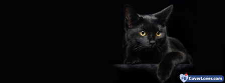 Blackcat 2   Facebook Covers