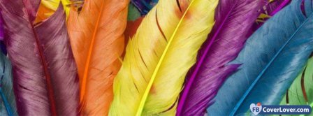 Colorful Feather  Facebook Covers