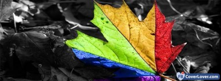 Colorful Leaf  Facebook Covers