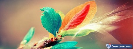 Colorful Leafs 2 Facebook Covers
