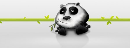 Cool Panda Facebook Covers