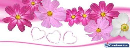 Cute Pink Flowers Facebook Covers