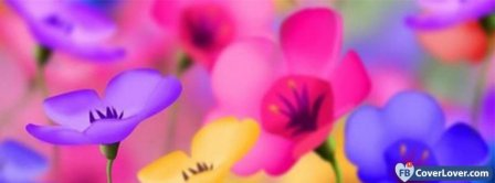 Colorful Flowers Facebook Covers