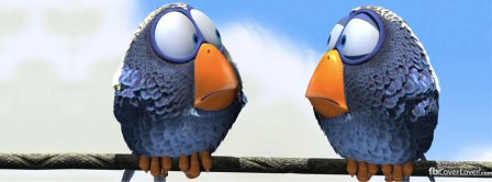 Funny Birds Facebook Covers