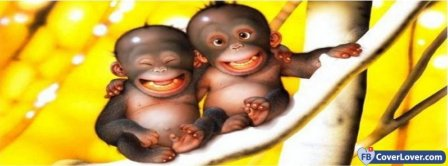 Funny Baby Monkeys Facebook Covers