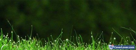 Green Grass  Facebook Covers