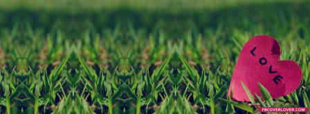Heart Love In Grass Facebook Covers