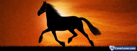 Mighty Horse 4 Facebook Covers