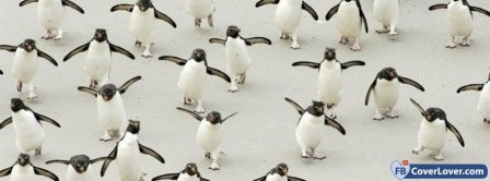Penguin Awareness Day  Facebook Covers