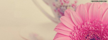 Beautiful Pink Flower  Facebook Covers