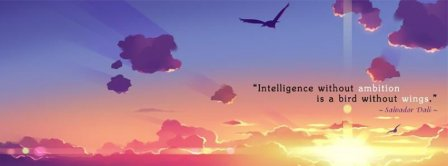 Intelligence Without Ambition Facebook Covers